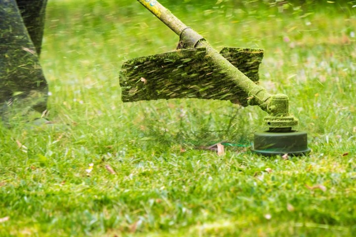 how-to-find-weed-eater-parts