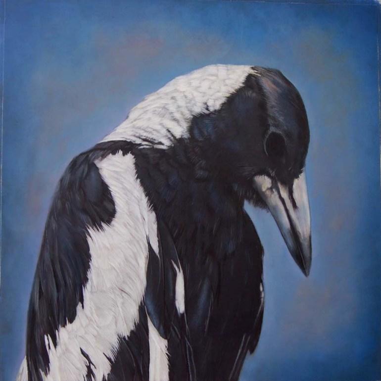 151.magpie