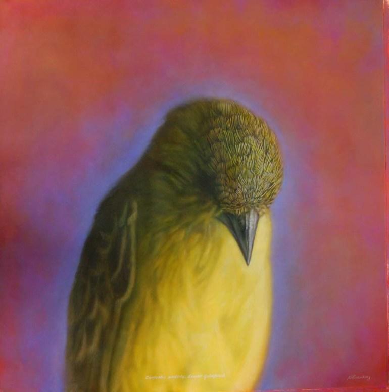 213.goldfinch